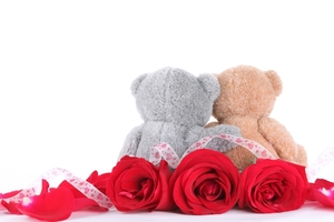 Valday teddy bears towel warmers istock 000015726710small