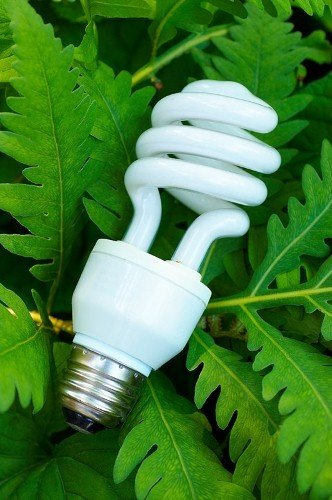 Examining the benefits of going green around the home