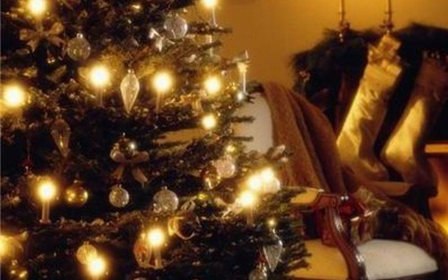 Christmas tree alternatives for your home