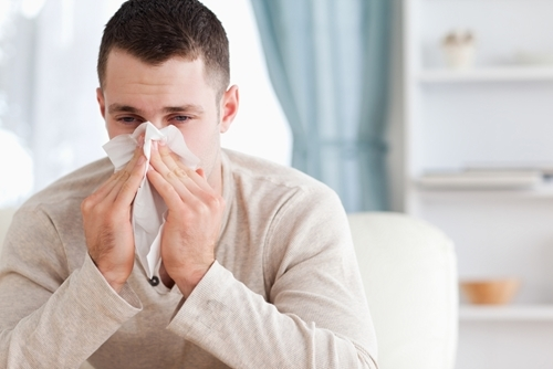 Poor indoor air quality can make allergy season a long one for those who experience symptoms